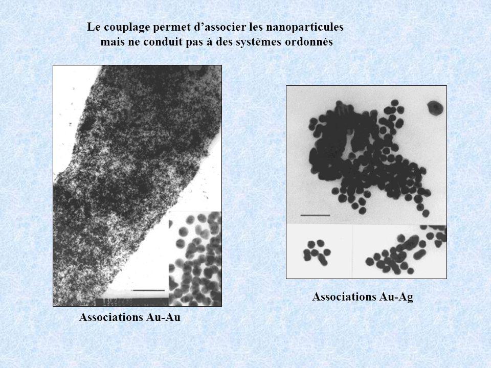 Associations Au-Au Associations Au-Ag Le couplage permet dassocier les nanoparticules mais ne conduit pas à des systèmes ordonnés