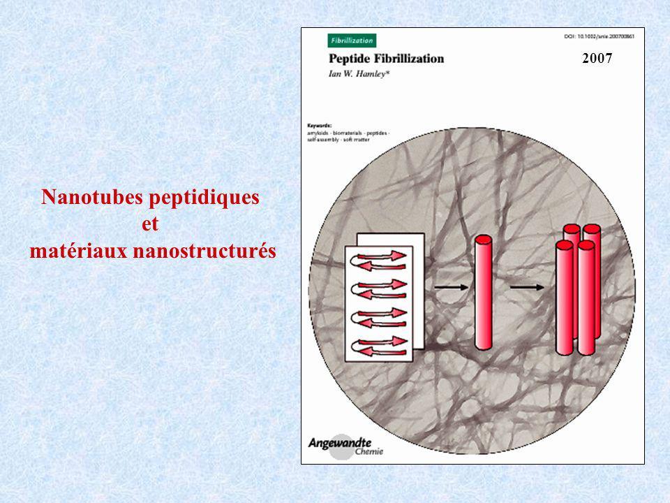 Nanotubes peptidiques et matériaux nanostructurés 2007