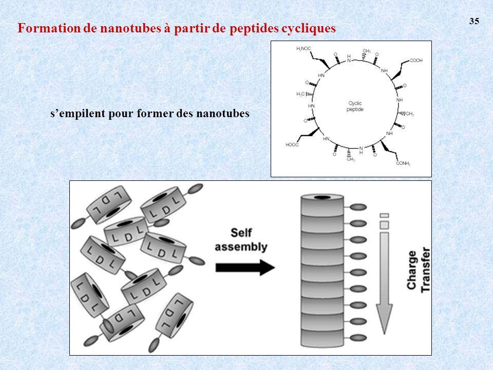 Formation de nanotubes à partir de peptides cycliques sempilent pour former des nanotubes 35