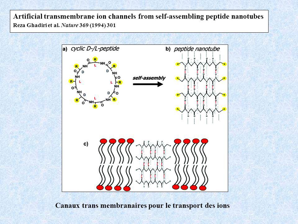 Canaux trans membranaires pour le transport des ions Artificial transmembrane ion channels from self-assembling peptide nanotubes Reza Ghadiri et al.