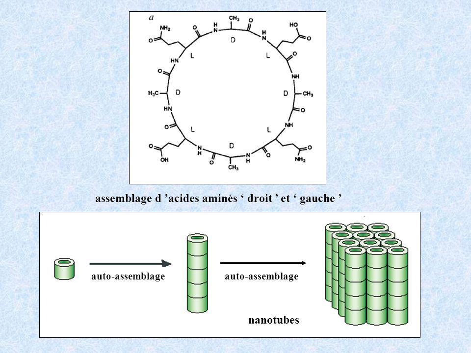 nanotubes auto-assemblage assemblage d acides aminés droit et gauche