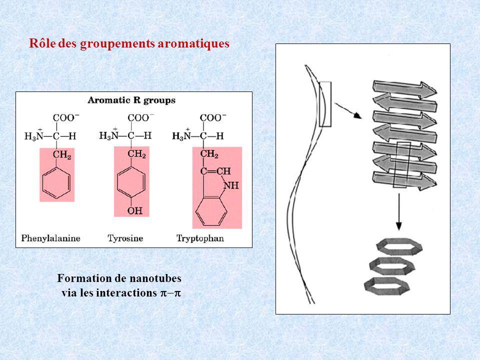 Rôle des groupements aromatiques Formation de nanotubes via les interactions