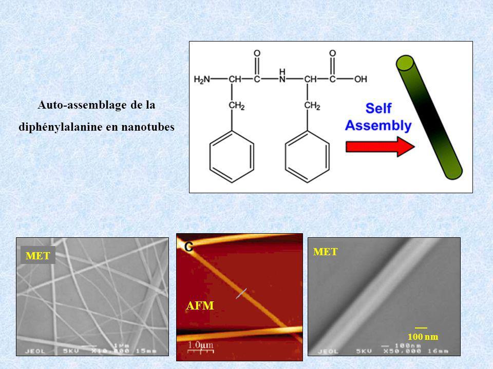 Auto-assemblage de la diphénylalanine en nanotubes 100 nm AFM MET