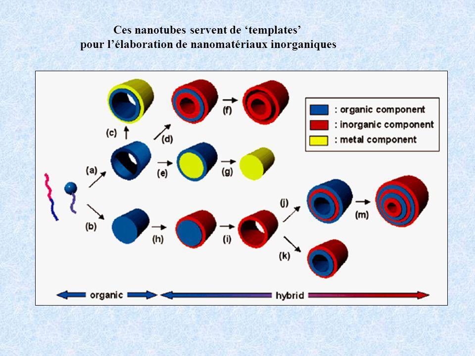 Ces nanotubes servent de templates pour lélaboration de nanomatériaux inorganiques