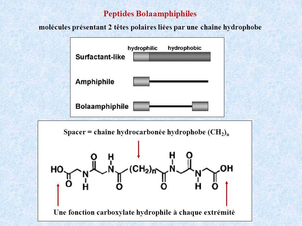 Peptides Bolaamphiphiles molécules présentant 2 têtes polaires liées par une chaîne hydrophobe Une fonction carboxylate hydrophile à chaque extrémité Spacer = chaîne hydrocarbonée hydrophobe (CH 2 ) n