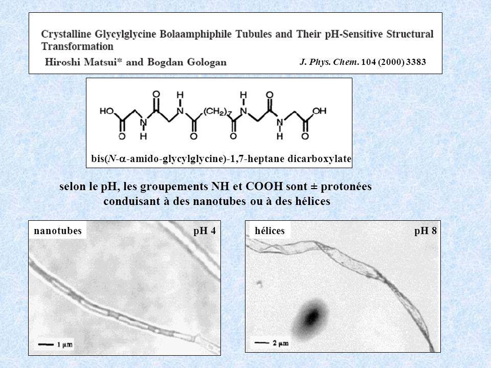 bis(N- -amido-glycylglycine)-1,7-heptane dicarboxylate pH 4pH 8nanotubeshélices selon le pH, les groupements NH et COOH sont ± protonées conduisant à des nanotubes ou à des hélices J.