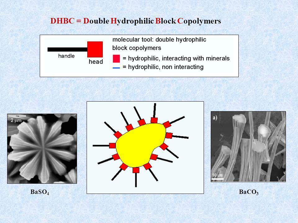 DHBC = Double Hydrophilic Block Copolymers BaSO 4 BaCO 3
