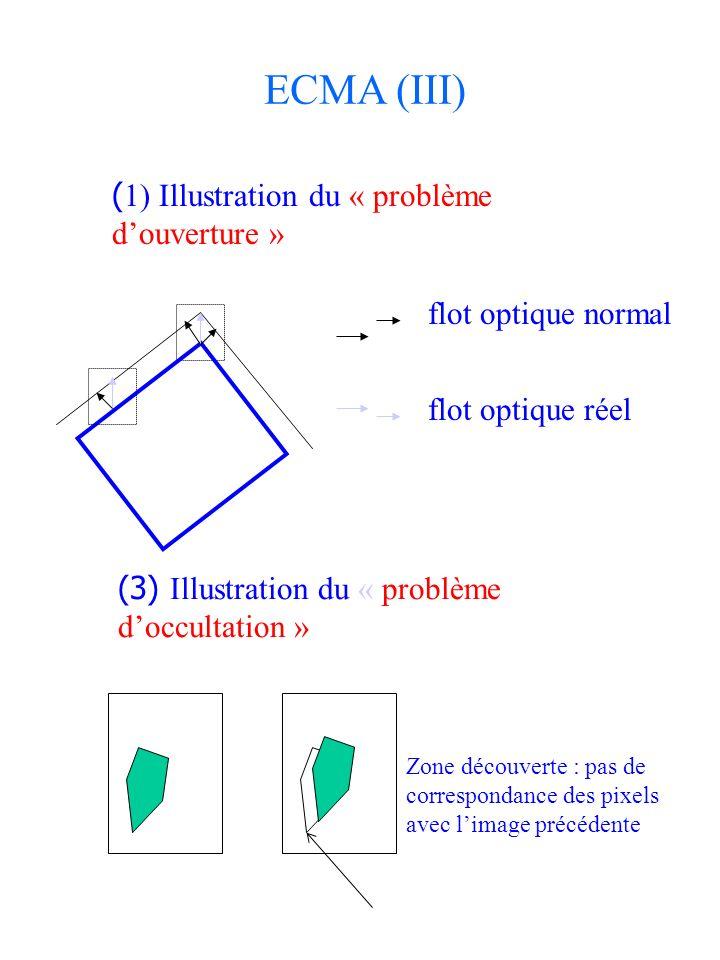 ( 1) Illustration du « problème douverture » Zone découverte : pas de correspondance des pixels avec limage précédente flot optique normal flot optiqu