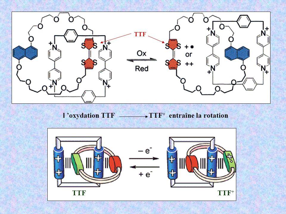 TTFTTF + l oxydation TTF TTF + entraîne la rotation TTF