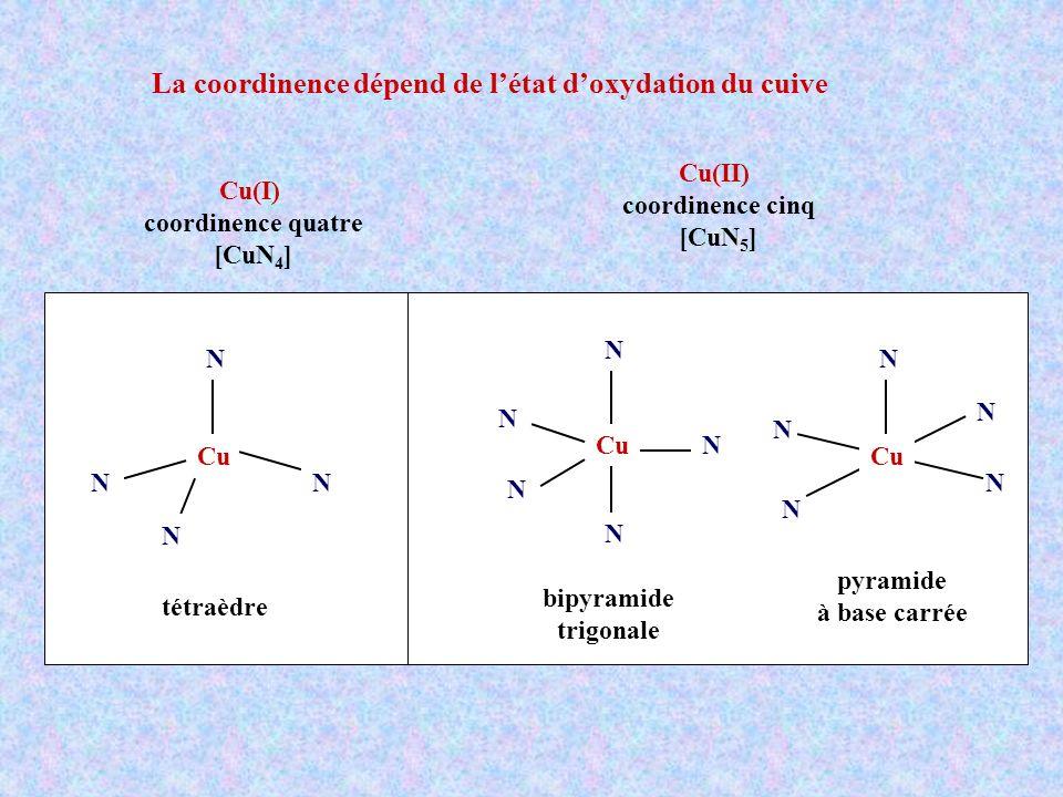 La coordinence dépend de létat doxydation du cuive Cu(I) coordinence quatre [CuN 4 ] Cu(II) coordinence cinq [CuN 5 ] Cu N N N N tétraèdre N N N N N Cu N N N N N bipyramide trigonale pyramide à base carrée