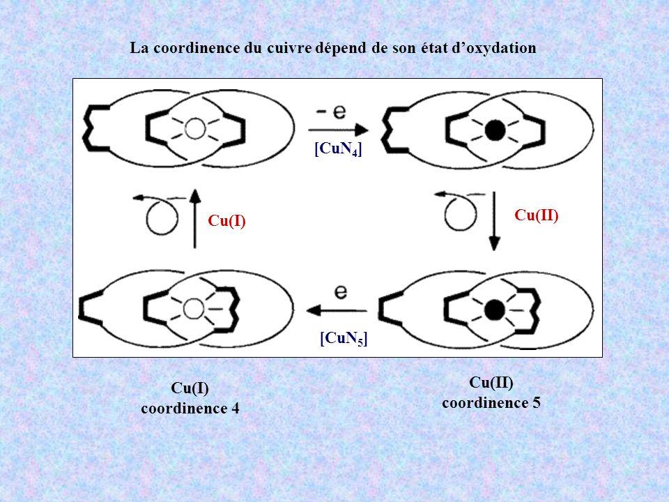 Cu(I) Cu(II) [CuN 4 ] [CuN 5 ] La coordinence du cuivre dépend de son état doxydation Cu(I) coordinence 4 Cu(II) coordinence 5