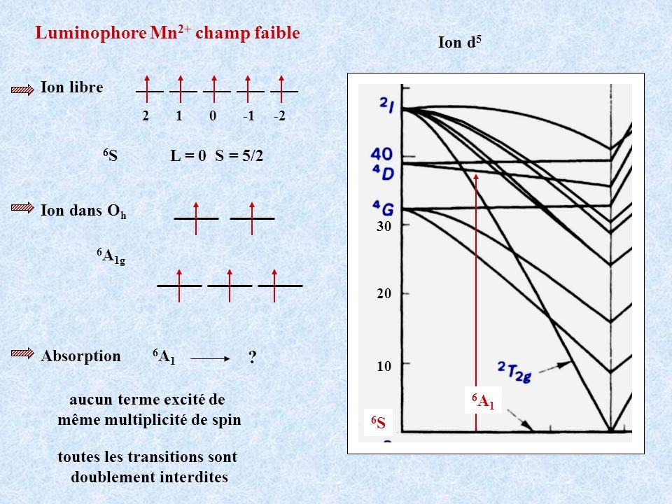 Luminophore Mn 2+ champ faible Ion d 5 Ion libre 2 1 0 -1 -2 6 S L = 0 S = 5/2 Ion dans O h 6 A 1g 10 20 30 6S6S toutes les transitions sont doublemen