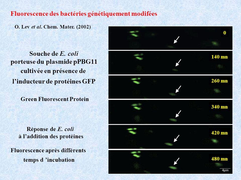 O.Lev et al. Chem. Mater.