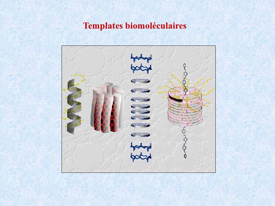 fixation de nanoparticules dor à la surface des nanotubes fixation de lavidine puis élimination des particules dor la biotine ne se fixe que sur lextrémité des nanotubes où reste lavidine