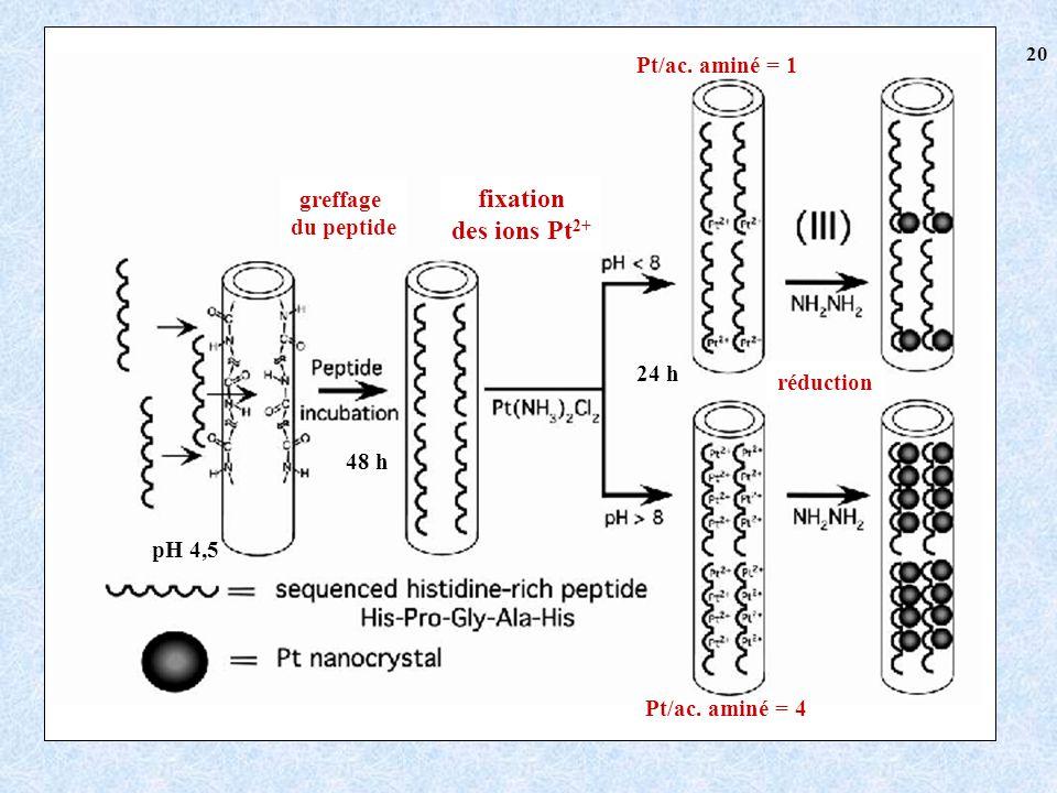 48 h pH 4,5 24 h greffage du peptide fixation des ions Pt 2+ Pt/ac.