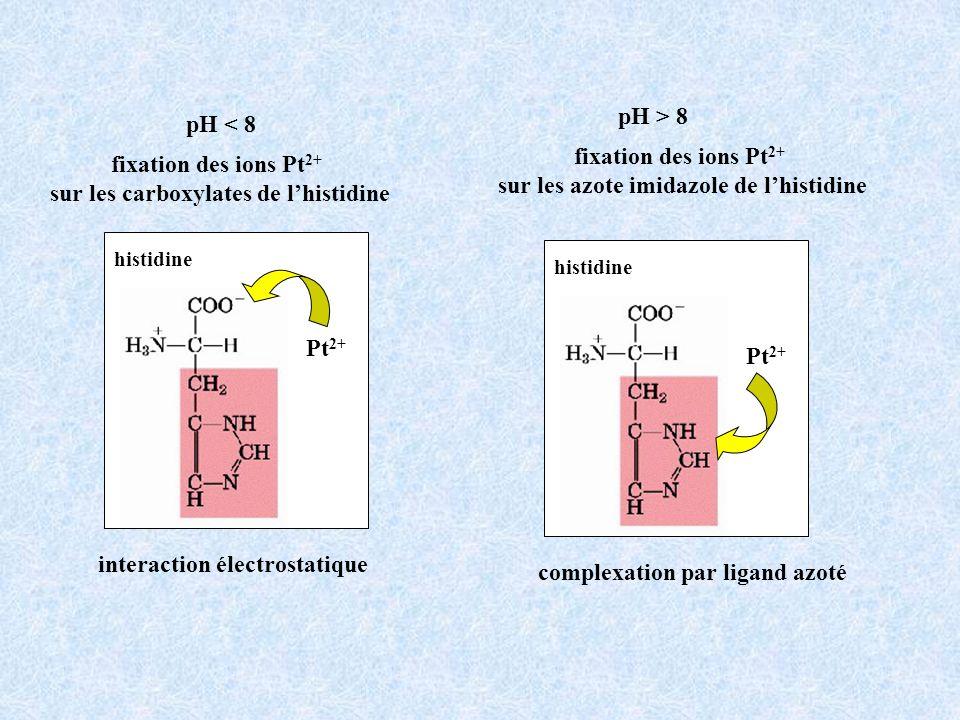 fixation des ions Pt 2+ sur les carboxylates de lhistidine pH < 8 histidine Pt 2+ pH > 8 fixation des ions Pt 2+ sur les azote imidazole de lhistidine histidine Pt 2+ interaction électrostatique complexation par ligand azoté