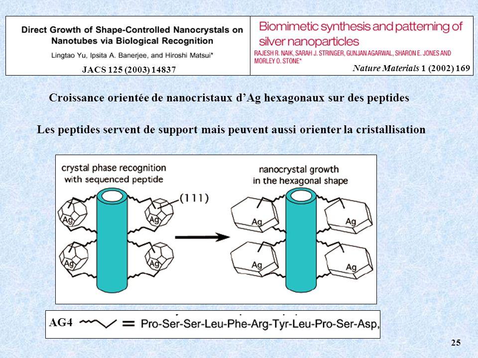Croissance orientée de nanocristaux dAg hexagonaux sur des peptides AG4 JACS 125 (2003) 14837 Nature Materials 1 (2002) 169 25 Les peptides servent de support mais peuvent aussi orienter la cristallisation