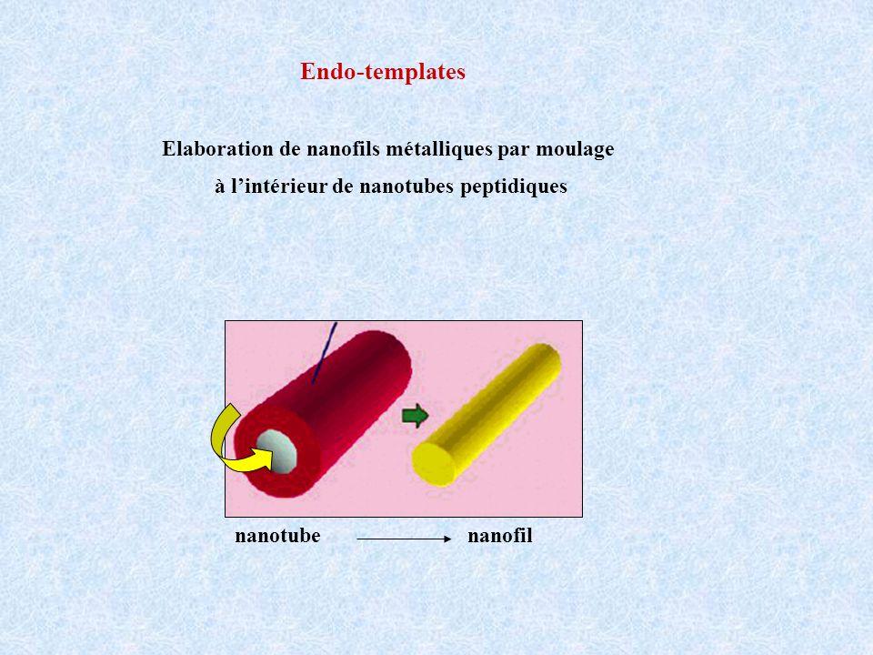 Elaboration de nanofils métalliques par moulage à lintérieur de nanotubes peptidiques Endo-templates nanotubenanofil