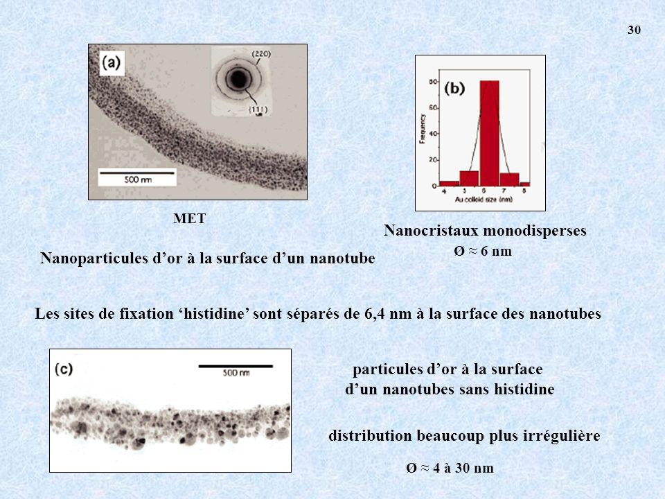 MET Nanocristaux monodisperses Ø 6 nm Nanoparticules dor à la surface dun nanotube Les sites de fixation histidine sont séparés de 6,4 nm à la surface des nanotubes particules dor à la surface dun nanotubes sans histidine distribution beaucoup plus irrégulière Ø 4 à 30 nm 30
