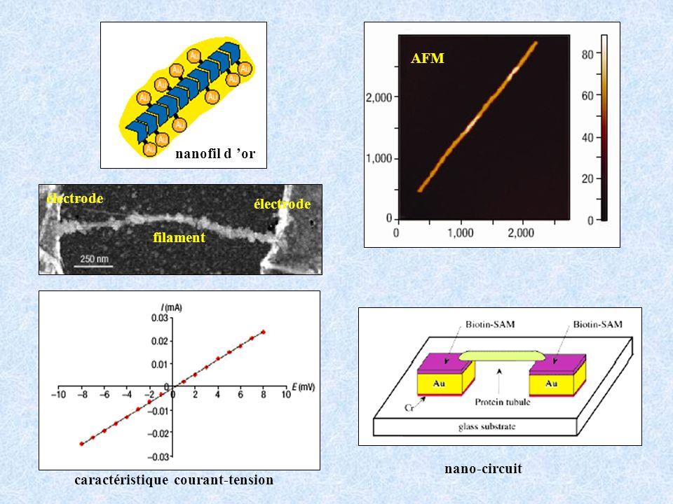 électrode filament électrode caractéristique courant-tension nanofil d or AFM nano-circuit