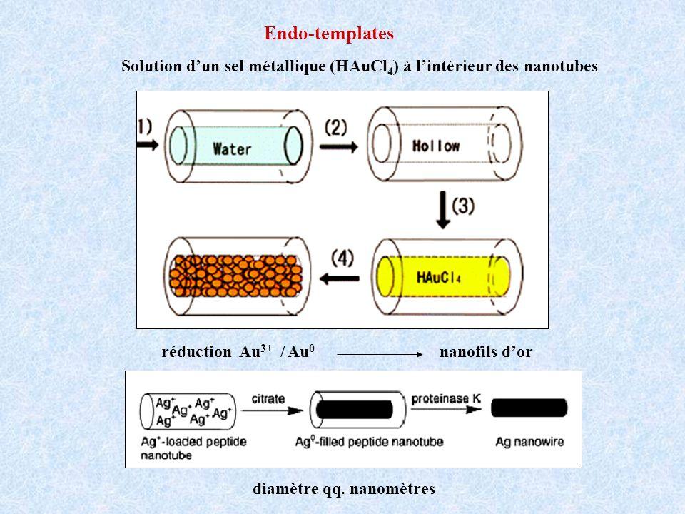 Endo-templates Solution dun sel métallique (HAuCl 4 ) à lintérieur des nanotubes réduction Au 3+ / Au 0 nanofils dor diamètre qq.
