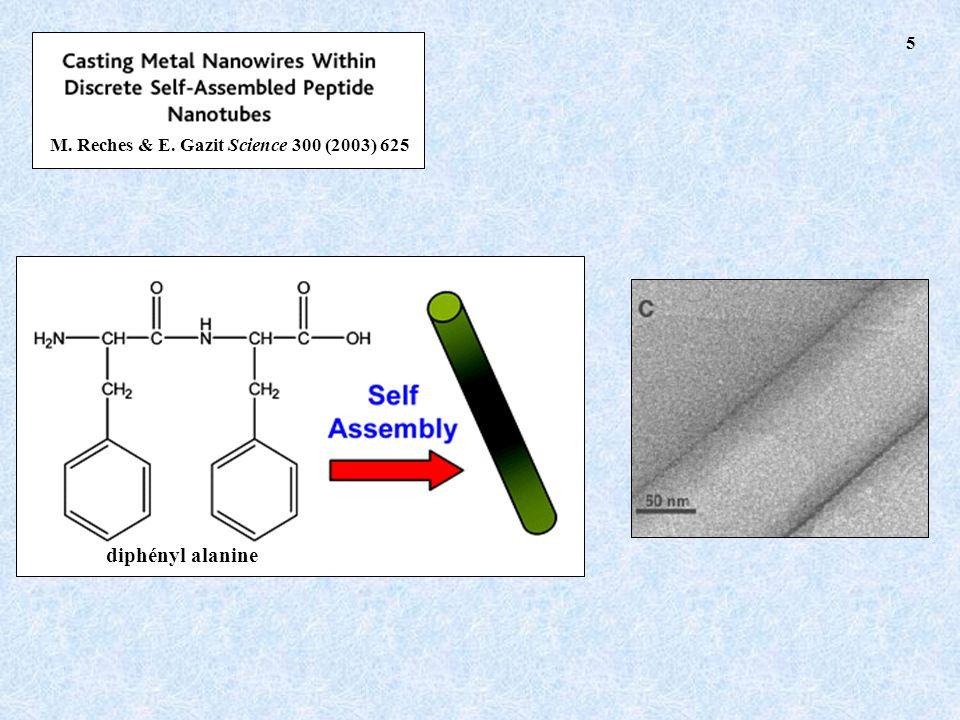 M. Reches & E. Gazit Science 300 (2003) 625 diphényl alanine 5