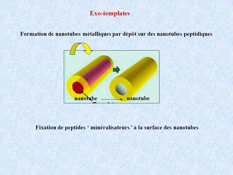 pH 4pH 10 NT sans peptide pH 4 Taux de couverture en fonction du pH % pH monodisperse Ø 12 nm - = 65% couche continue = 95% 1 seul site de fixation 4 sites de fixation