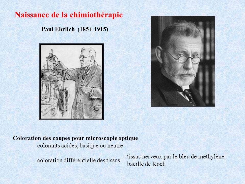 Paul Ehrlich (1854-1915) Naissance de la chimiothérapie Coloration des coupes pour microscopie optique colorants acides, basique ou neutre coloration