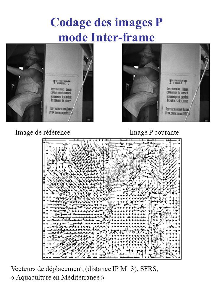 Codage des images P mode Inter-frame Image P couranteImage de référence Vecteurs de déplacement, (distance IP M=3), SFRS, « Aquaculture en Méditerrané