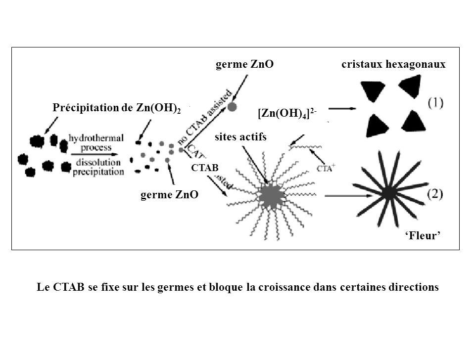 germe ZnO Précipitation de Zn(OH) 2 germe ZnO CTAB [Zn(OH) 4 ] 2- cristaux hexagonaux Fleur sites actifs Le CTAB se fixe sur les germes et bloque la c