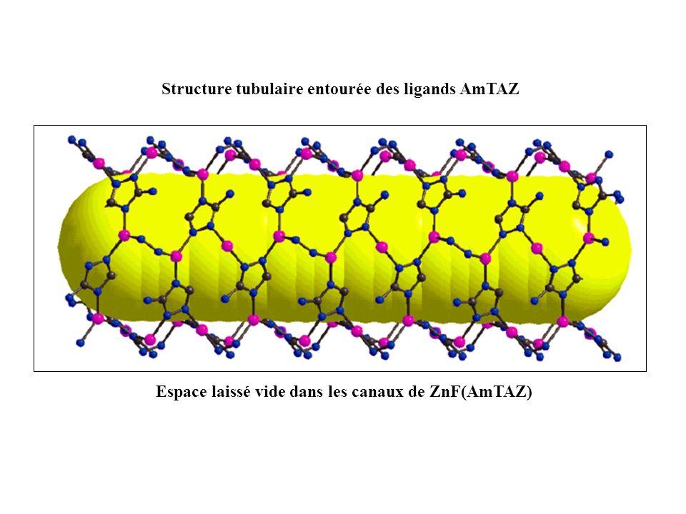 Espace laissé vide dans les canaux de ZnF(AmTAZ) Structure tubulaire entourée des ligands AmTAZ