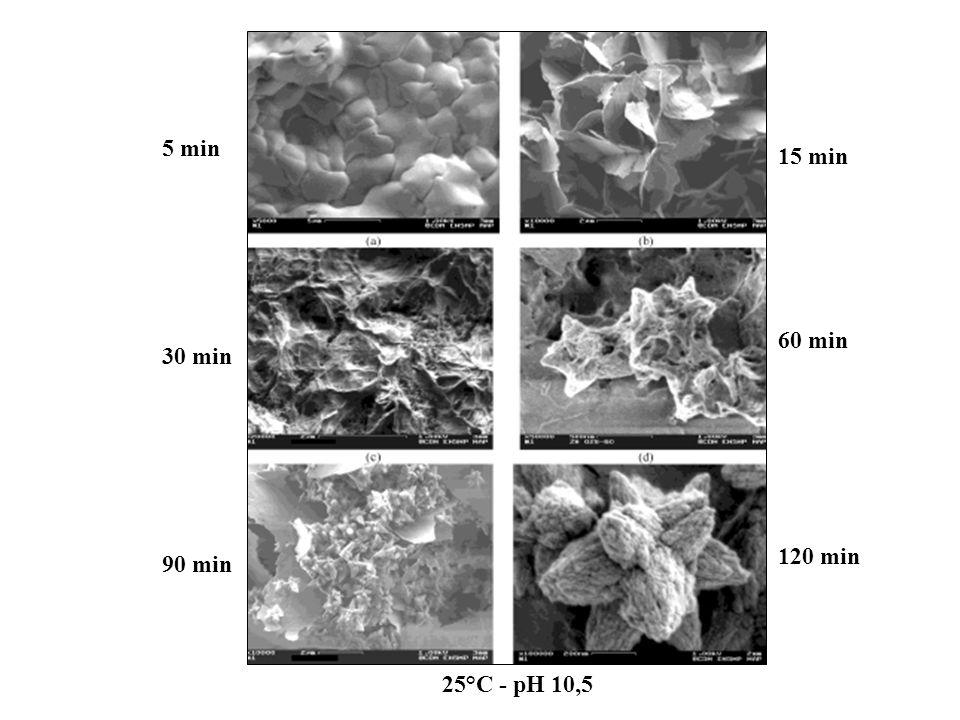 25°C - pH 9,5 25°C - pH10,5 ellipsoïdes étoiles Les particules résultent de l association de nano-cristaux allongés