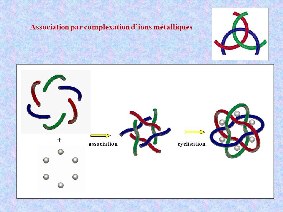 Association par complexation dions métalliques + associationcyclisation