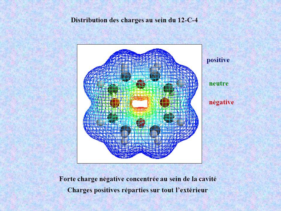 Distribution des charges au sein du 12-C-4 négative neutre positive Forte charge négative concentrée au sein de la cavité Charges positives réparties