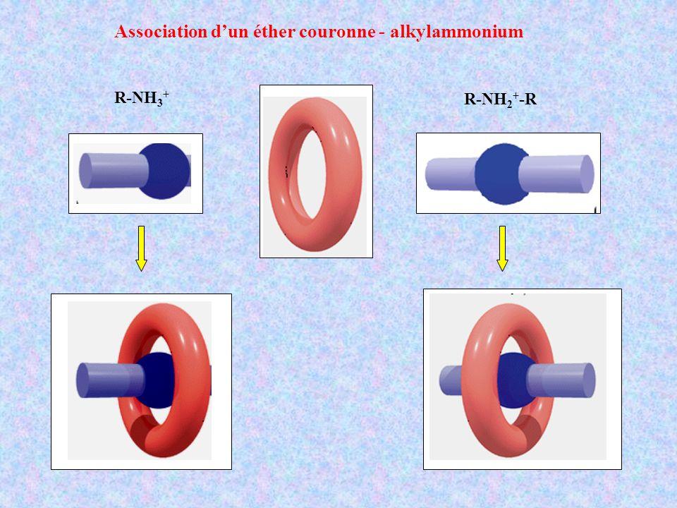 Association dun éther couronne - alkylammonium R-NH 3 + R-NH 2 + -R