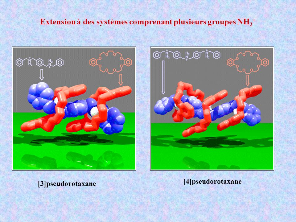 [3]pseudorotaxane [4]pseudorotaxane