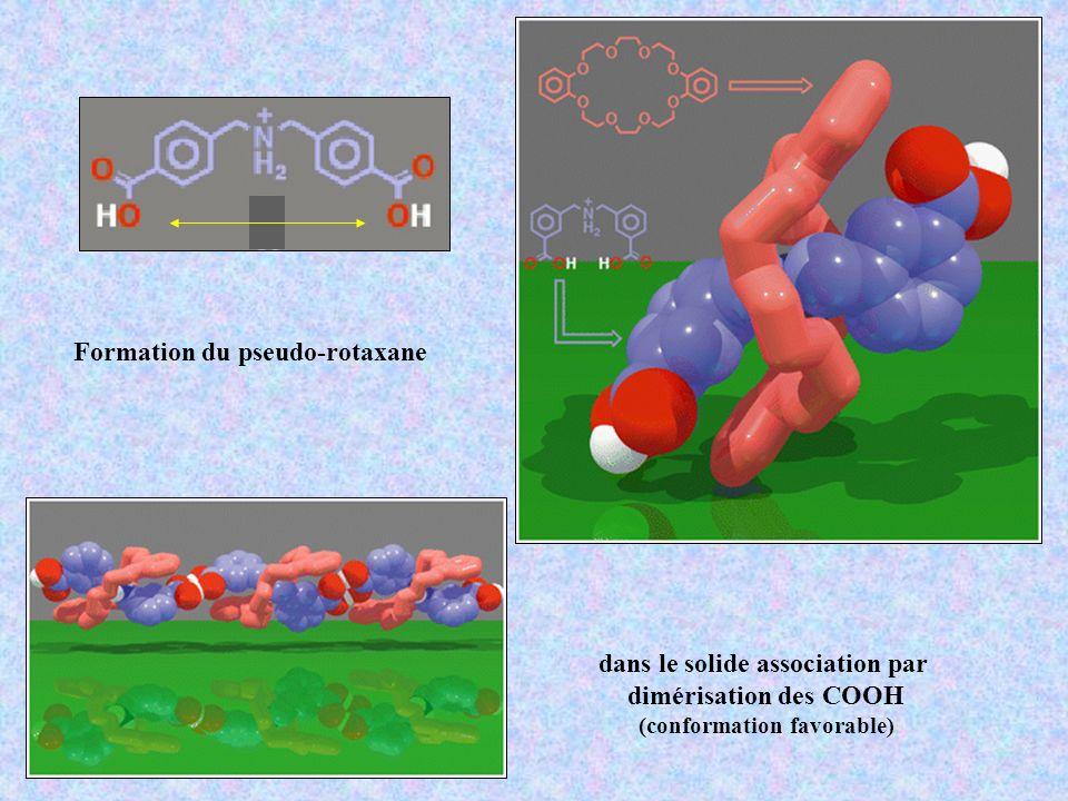 Formation du pseudo-rotaxane dans le solide association par dimérisation des COOH (conformation favorable)