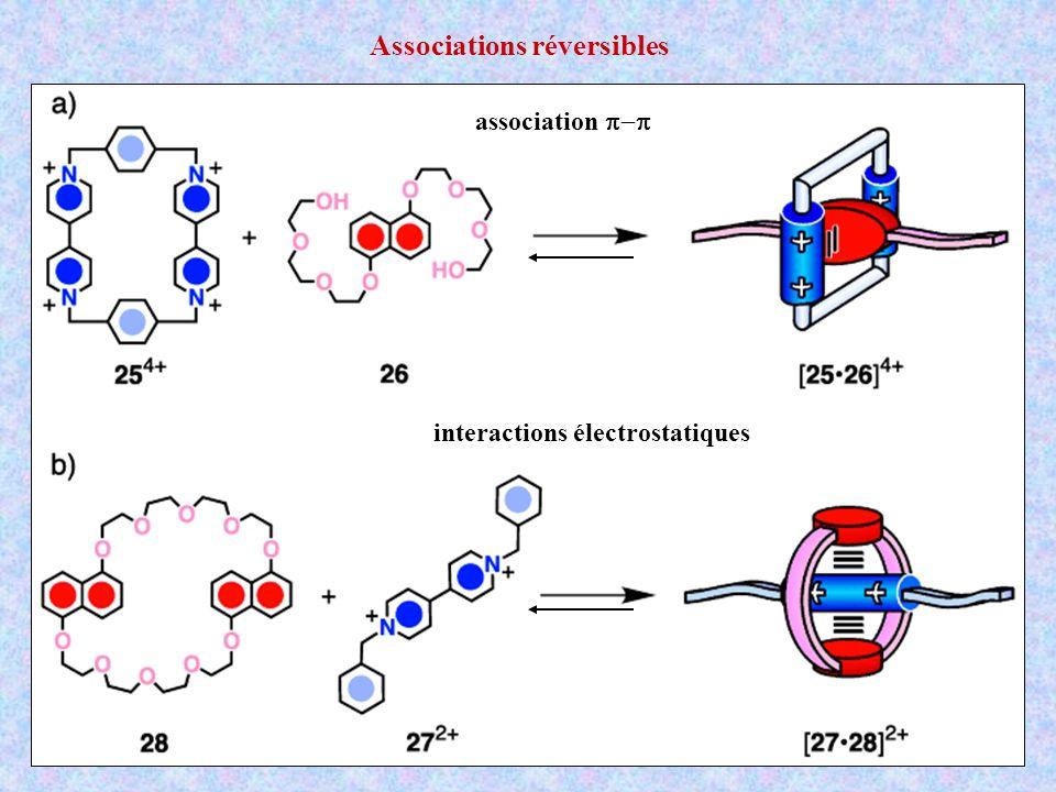 association interactions électrostatiques Associations réversibles