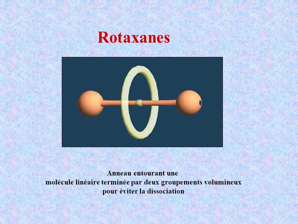 Rotaxanes Anneau entourant une molécule linéaire terminée par deux groupements volumineux pour éviter la dissociation