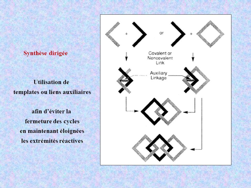 Synthèse dirigée Utilisation de templates ou liens auxiliaires afin déviter la fermeture des cycles en maintenant éloignées les extrémités réactives