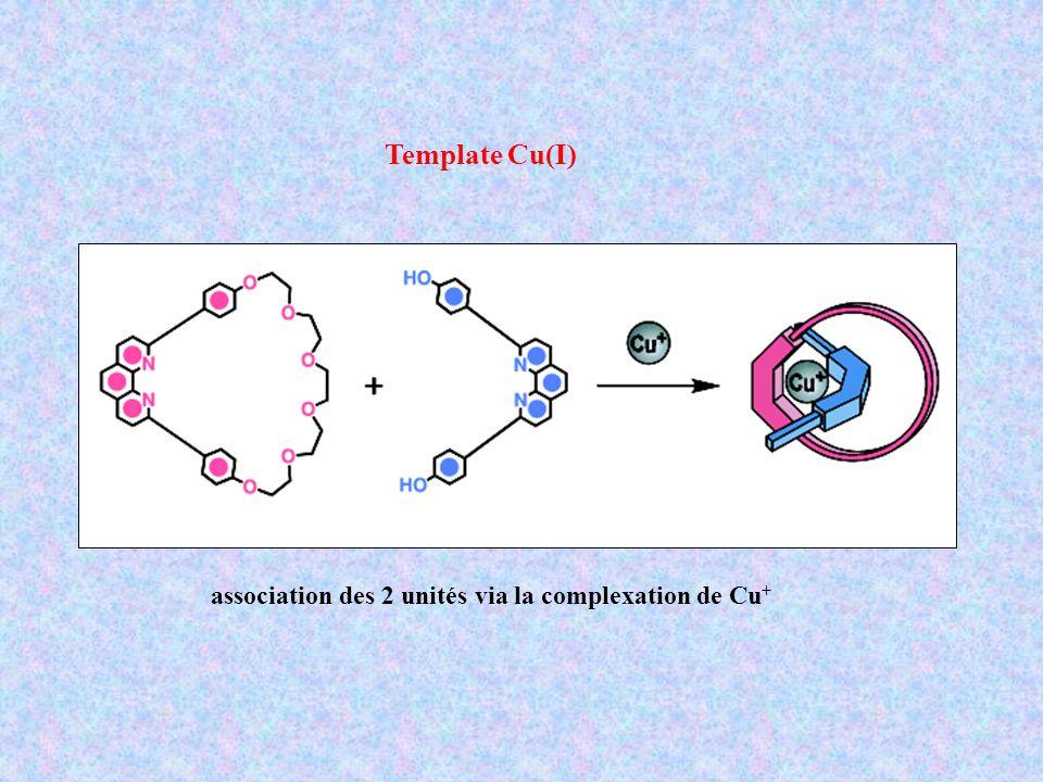 association des 2 unités via la complexation de Cu + Template Cu(I)