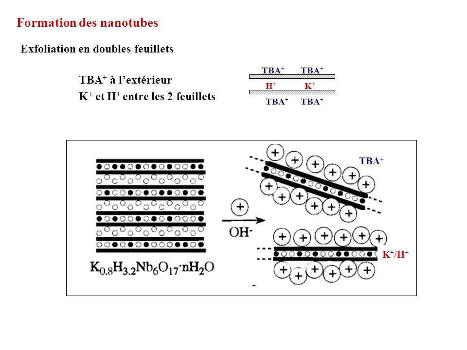 Formation des nanotubes Exfoliation en doubles feuillets K + et H + entre les 2 feuillets TBA + à lextérieur H+H+ K+K+ TBA + K + /H +