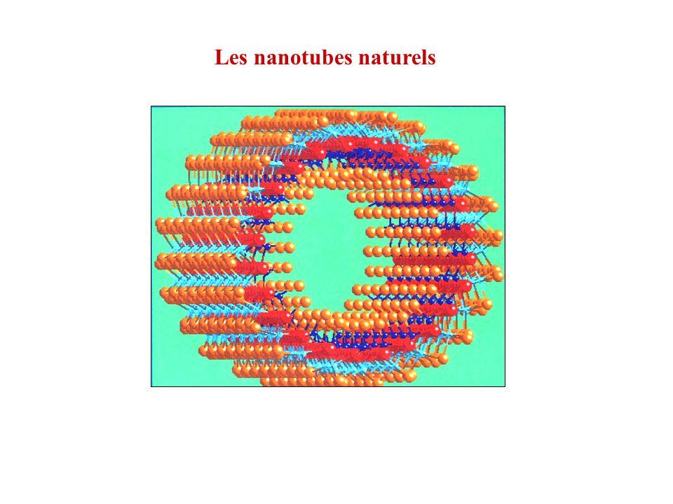Halloysite argile de la famille des kaolins Al 2 O 3 [Si(OH) 4 ] 2 Utah