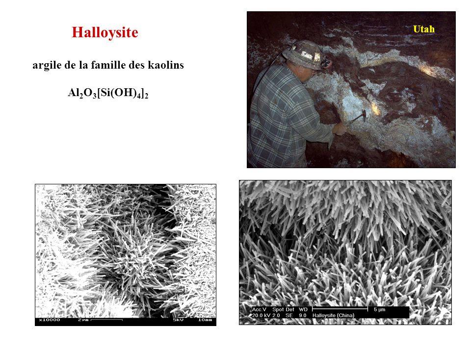 Nanotubes dHalloysite l 1 µm - e 0,1 µm
