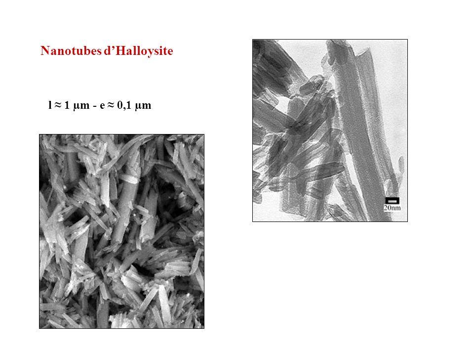 composites argile-polymère
