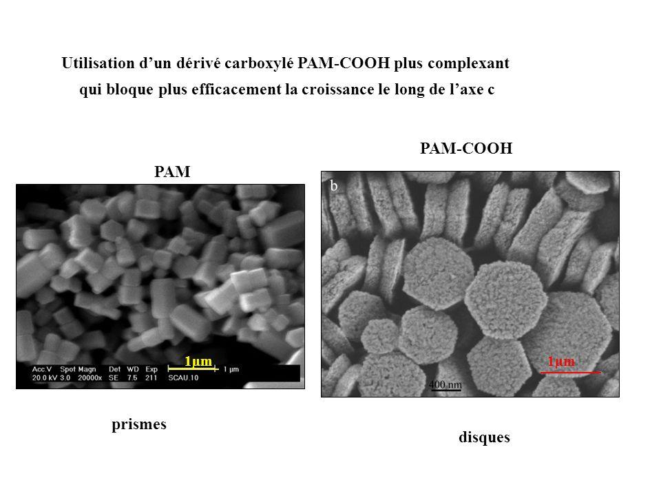 Utilisation dun dérivé carboxylé PAM-COOH plus complexant qui bloque plus efficacement la croissance le long de laxe c PAM PAM-COOH prismes disques 1µ