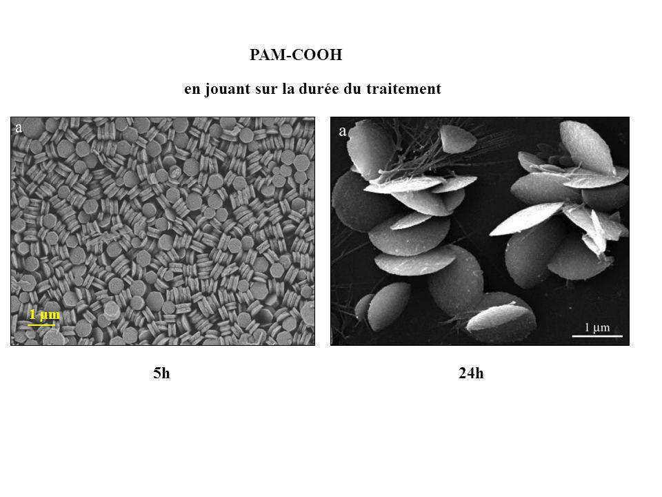 PAM-COOH en jouant sur la durée du traitement 5h24h