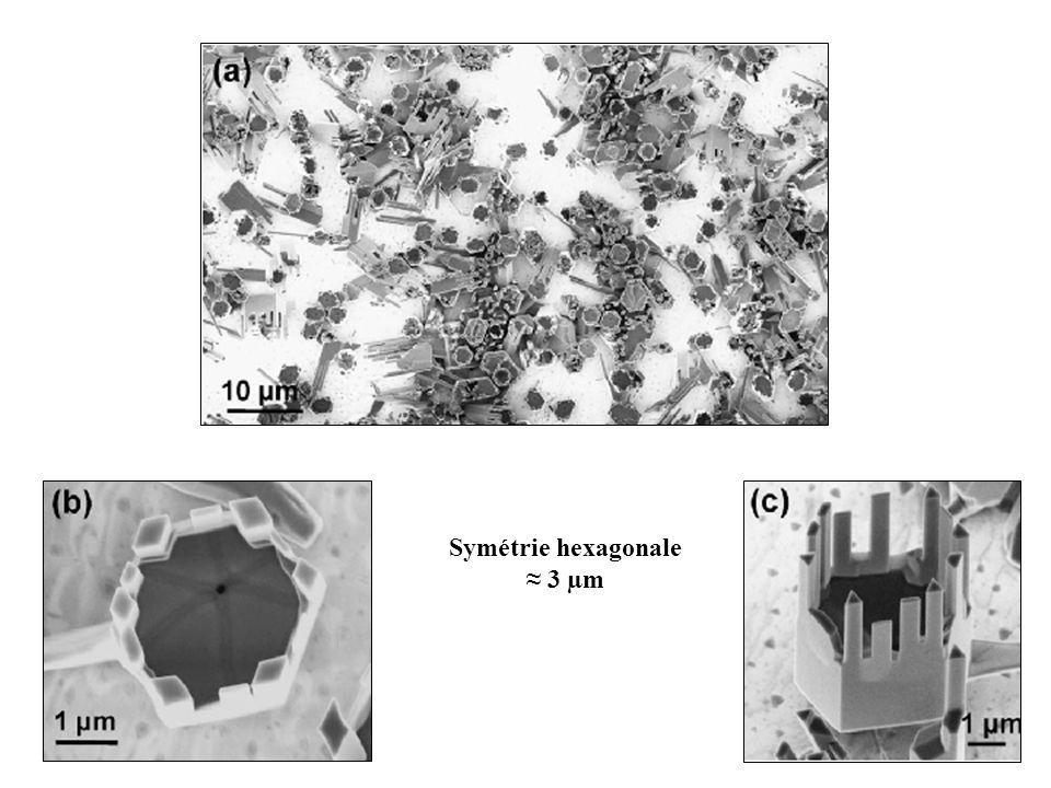 Symétrie hexagonale 3 µm