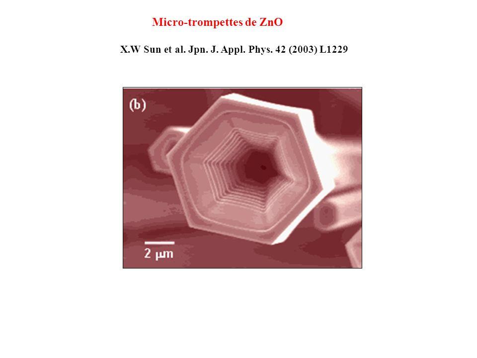 X.W Sun et al. Jpn. J. Appl. Phys. 42 (2003) L1229 Micro-trompettes de ZnO