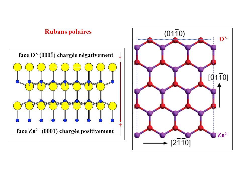 Rubans polaires face Zn 2+ (0001) chargée positivement face O 2- (0001) chargée négativement - - + Zn 2+ O 2-